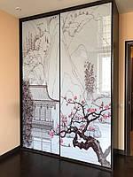 Двері розсувні для шафи-купе з фотодруком