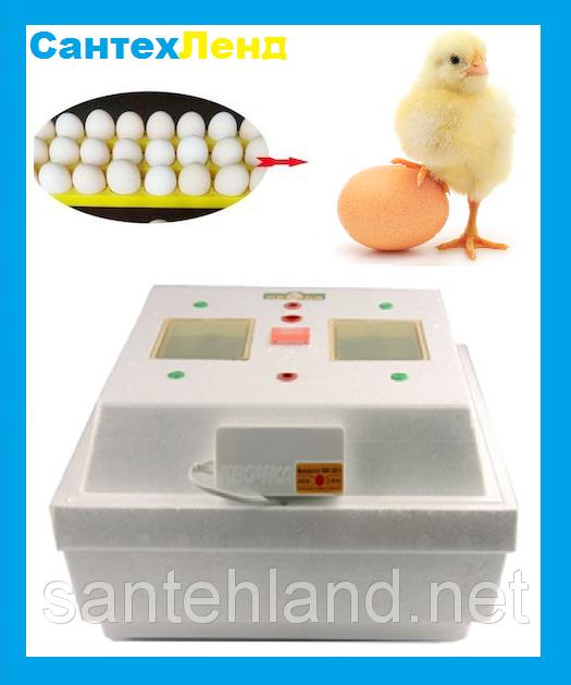 Инкубатор Квочка МИ-30-1-С 80 яиц ручной переворот (Ламповая)