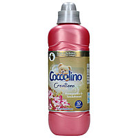 Coccolino Creations Honeysuckle & Sandalwood кондиціонер для білизни Жимолость і сандал 925 мл на 37 прань