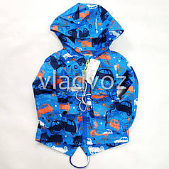 Детская демисезонная куртка ветровка на мальчика синяя 1-2 года