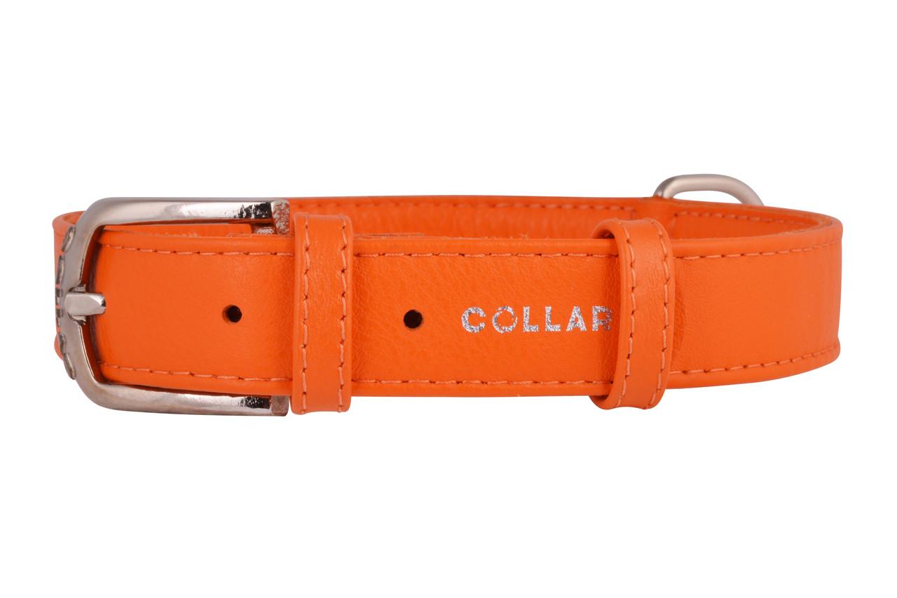 Ошейник Collar Glamour без украшений, ширина 2 см длина 30-39 см