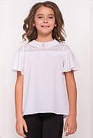 детская блузка Modus Ореанда 5193
