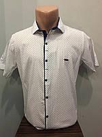 Мужская рубашка стрейч котон М,XL,2XL