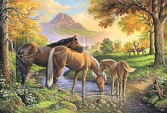 """Алмазная вышивка 60х40см - набор """"Семья лошадей"""""""