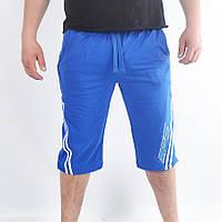 Мужские спортивные бриджи из 100% хлопка - (41-56707(3))