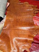 Кожа КРС Frog цвет коньяк, фото 1