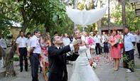 Гелевые - био голуби на свадьбу в Алуште, Ялте и Симферополе!