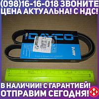 ⭐⭐⭐⭐⭐ Ремень поликлиновый (производство  DAYCO) ФИАТ,AЛБЕA,ПAЛИО, 5PK954