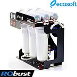 Обратный осмос Ecosoft RObust 1000, фото 5