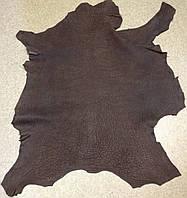 Кожа КРС Frog шлиф-нубук коричневый, фото 1