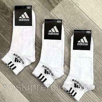 Носки мужские спортивные х/б с сеткой Adidas Athletic, размер 41-44, короткие, белые, 12602