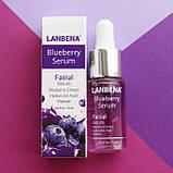 Концентрированная сыворотка LANBENA Blueberry  с гиалуроновой кислотой + пептиды + экстракт черники 15 ml, фото 6