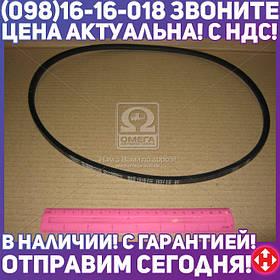 ⭐⭐⭐⭐⭐ Ремень 8,5х8х1018 ГАЗ 24 (производство  Rubena)  8,5х8-1018