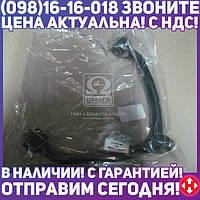 ⭐⭐⭐⭐⭐ Рычаг подвески KIA SPORTAGE верхний  (пр-во CTR)
