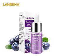 Концентрированная сыворотка LANBENA Blueberry  с гиалуроновой кислотой+ пептиды + экстракт черники 15 ml