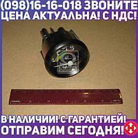 ⭐⭐⭐⭐⭐ Указатель температуры воды и масла МТЗ, МАЗ 12В (производство  Юбана, Литва)  ЭИ8008-3
