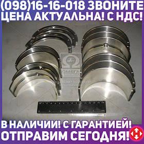 ⭐⭐⭐⭐⭐ Вкладыши коренные Н2 Д 440 АО20-1 (производство  ЗПС, г.Тамбов)  А23.01-116-445сб