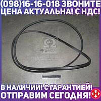 ⭐⭐⭐⭐⭐ Ремень С(В)-3550 (производство  ЯРТ)  С(В)-3550