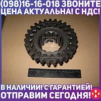 ⭐⭐⭐⭐⭐ Шестерня 2-передачи ведущая ЮМЗ (производство  Украина)  40-1701057-А1