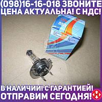 ⭐⭐⭐⭐⭐ Лампа H7 12V 55W PX26D Премиум (Квант)  65002000