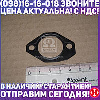 ⭐⭐⭐⭐⭐ Защитная пластина (пр-во Bosch)