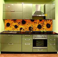 Кухня прямая с фасадом МДФ пленочный