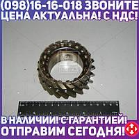 ⭐⭐⭐⭐⭐ Шестерня КПП ЗИЛ 433360,ПАЗ 4-й передний вторичного вала z=21 (АМО ЗИЛ, производство  СААЗ)  320570-1701181