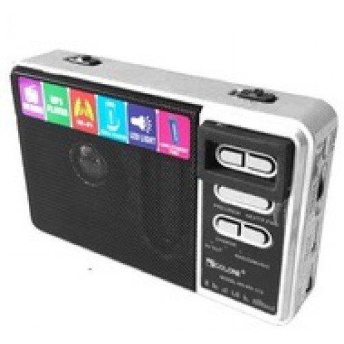 Портативное радио  Golon RX-113 с powerbank 10 000 mAh фонариком usb и SD серебро