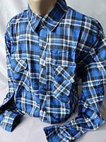 Хлопковые байковые рубашки дёшево