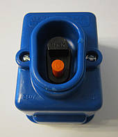 Кнопка пусковая ПНВС 220В/6,3А синяя.
