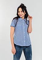 Модная женская рубашка на пуговицах с отложным воротником и короткими рукавами  Modniy Oazis голубой 90312/3