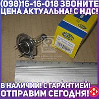 ⭐⭐⭐⭐⭐ Лампа H7 24V 70W PX26d (кор.код. H7 24)) (производство  Magneti Marelli)  002558100000