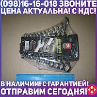 ⭐⭐⭐⭐⭐ Набор ключей комбинированных 6-22мм, 12 пр., пластик