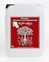 Бор 150 + Молібден (5л) Мікродобриво StimAgro