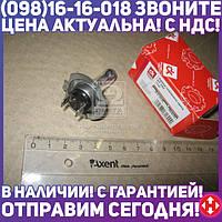⭐⭐⭐⭐⭐ Лампа головного света H7 24V 70W (Дорожная Карта)  DK-H7 24V70W