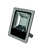 Прожектор LED Roilux 30W SMD 6400К