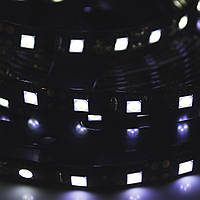 LED Galaxy/strip 24v5050/300 SMD//white/