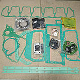 02931279  комплект прокладок BF6M1013, фото 2