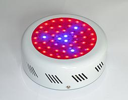 Светильник для растений 50W (300 мА) Ecolend