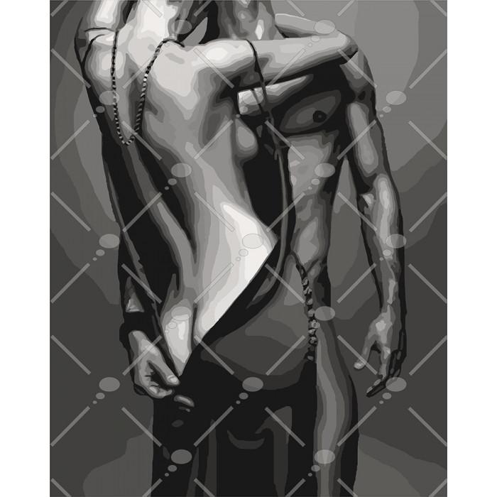 Картина по номерам Идейка - Passion 40x50 см (КНО4579)