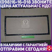 ⭐⭐⭐⭐⭐ Прокладка бака верхнего радиатора водяного (производство  Украина)  36-1301165-А