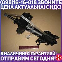 ⭐⭐⭐⭐⭐ Амортизатор подвески НИССАН MAXIMA передний левый Excel-G (производство  Kayaba) НИССАН, 334367
