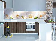 Кухонный фартук Белая орхидея 03 (полноцветная фотопечать виниловая пленка для стеновой панели скинали) 600*2500 мм, фото 1