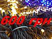 Ціна гірлянди Flash String - 600 гривень за 10 метрів