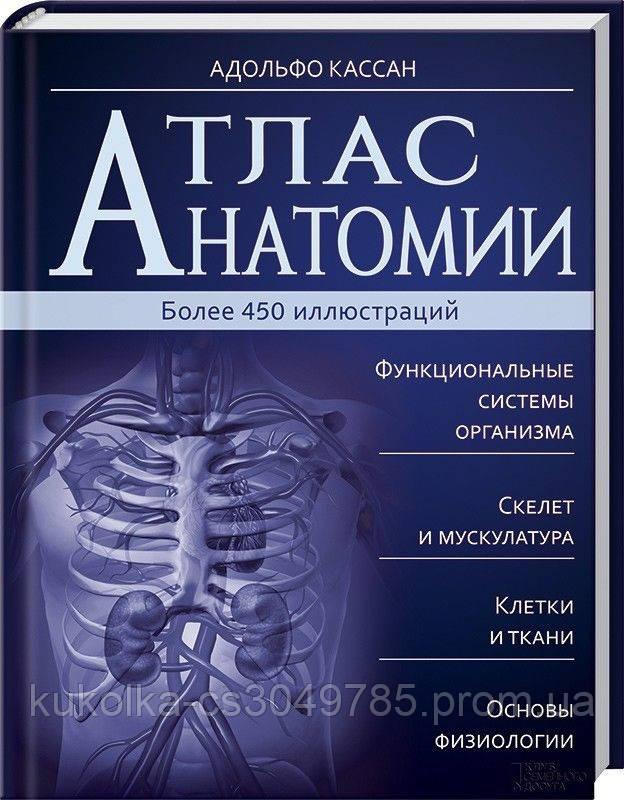 Атлас анатомии.  Адольфо Кассан