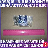 ⭐⭐⭐⭐⭐ Штифт 6x19,5 ступицы для фиксации шпильки (пр-во BPW)