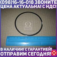 ⭐⭐⭐⭐⭐ Кольцо поршневое маслосъемное Cummins ISF 2,8L (пок. ГАЗ)