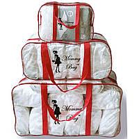 Набор из 3 прозрачных сумок в роддом Mommy Bag сумка - S,L,XL - Красные