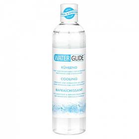 Waterglide Cooling 300ml, лубрикант (смазка) на водной основе, Германия