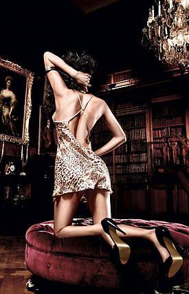 Обаятельный пеньюар Leopard Satin Chemise от BACI Lingerie, фото 2